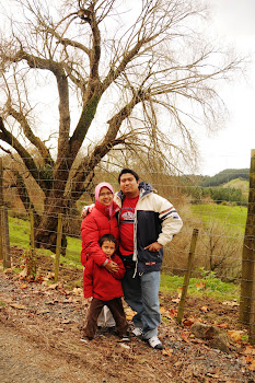 Kami di Hamilton, New Zealand