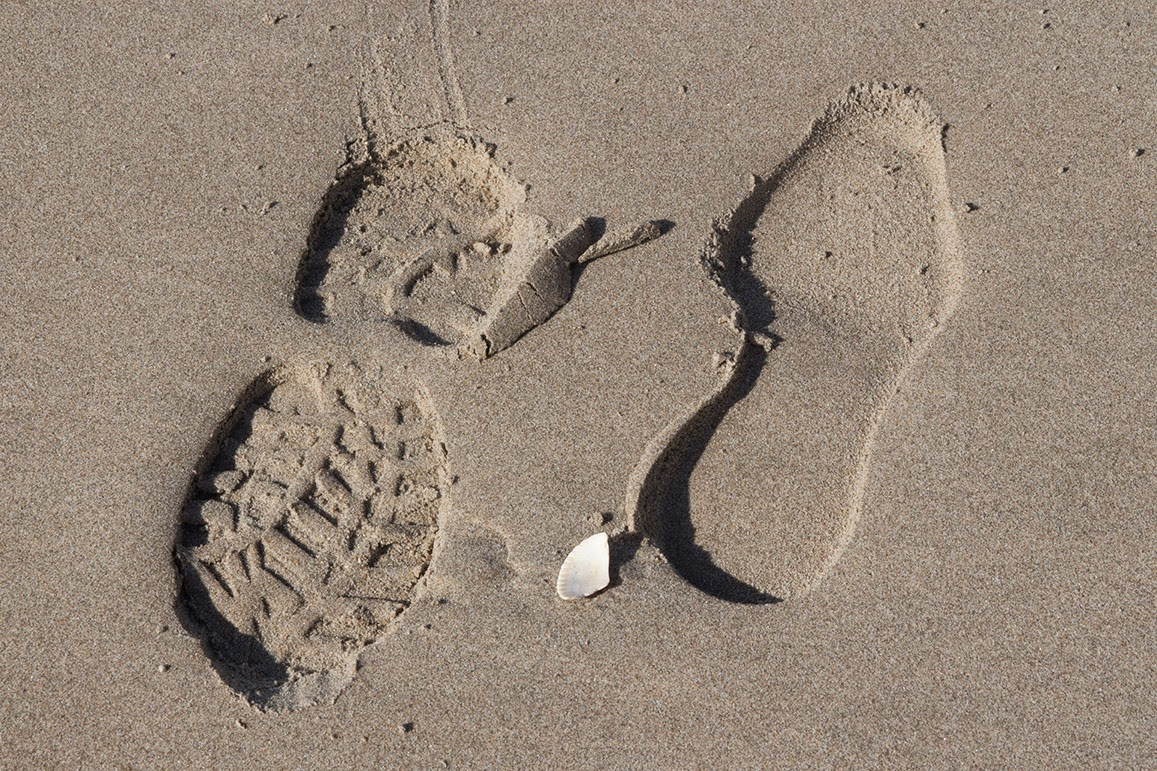 footsteps in sand with seashell