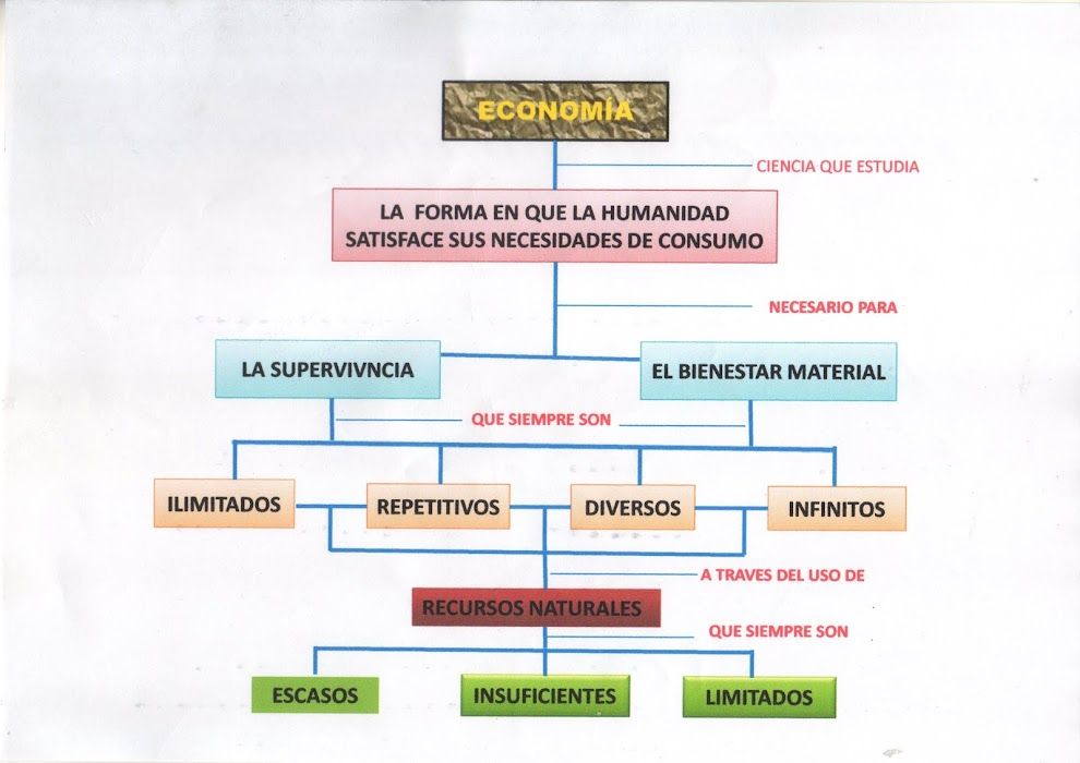 CONCEPTO DE ECONOMÍA (GRÁFICO)