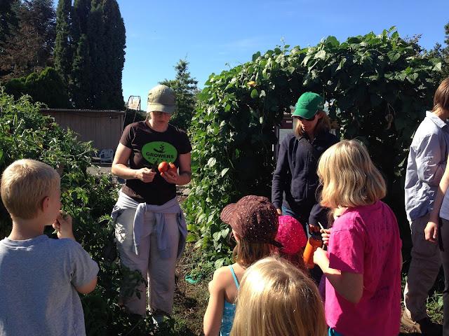 tasting tour grassroots garden eugene oregon