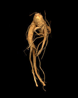 Panax ginseng may enhance the effects of coffee or stimulant substances.