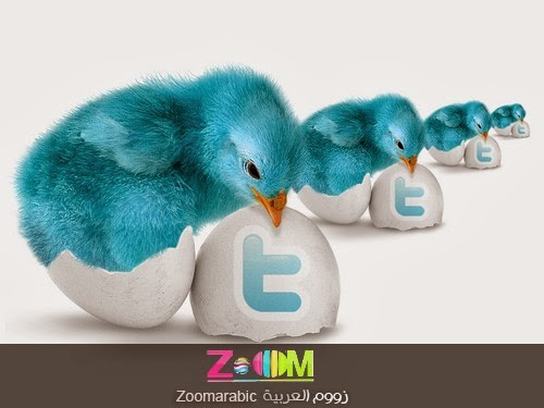 التصميم الجديد موقع التدوين تويتر Twitter