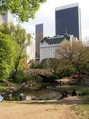 New York Central Park The Pond