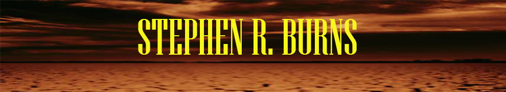 STEPHEN R. BURNS... A Novelist's Blog