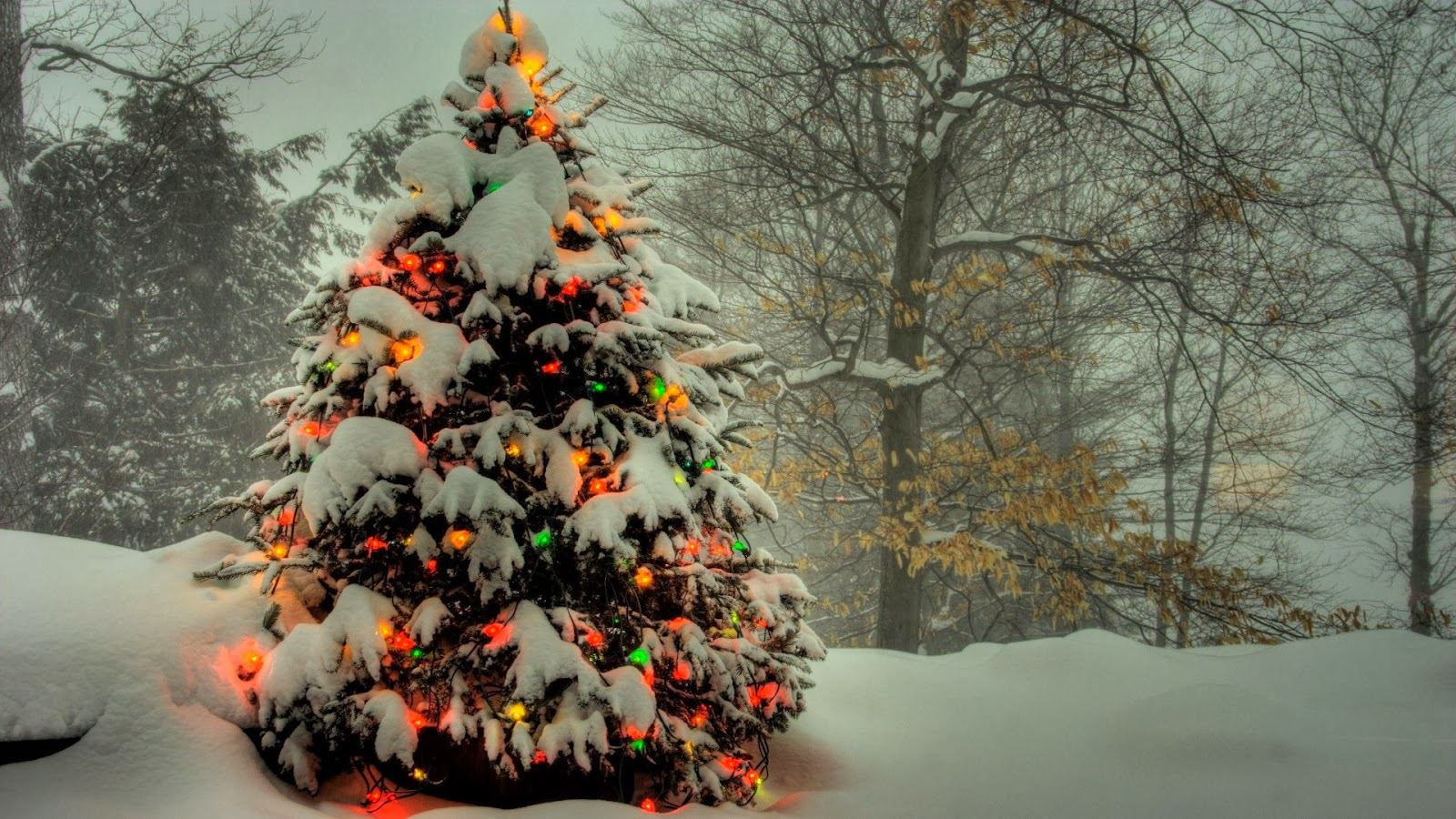 free christmas tree wallpapers - photo #11