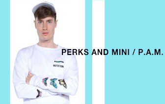 PERKS AND MINI P.A.M.
