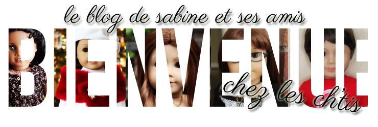 Bienvenue Chez Les Ch'tis: Le blog de Sabine et ses amis!