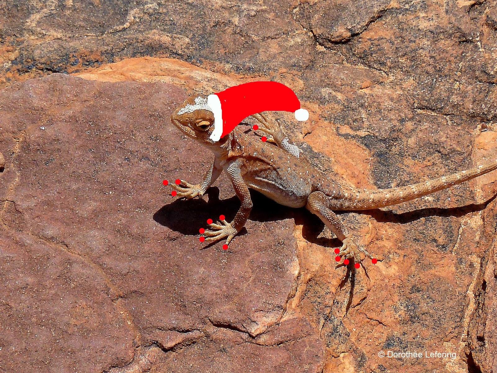 AUSTRALIEN-EREIGNISSE: Australien: Noch sechs Tage bis Weihnachten