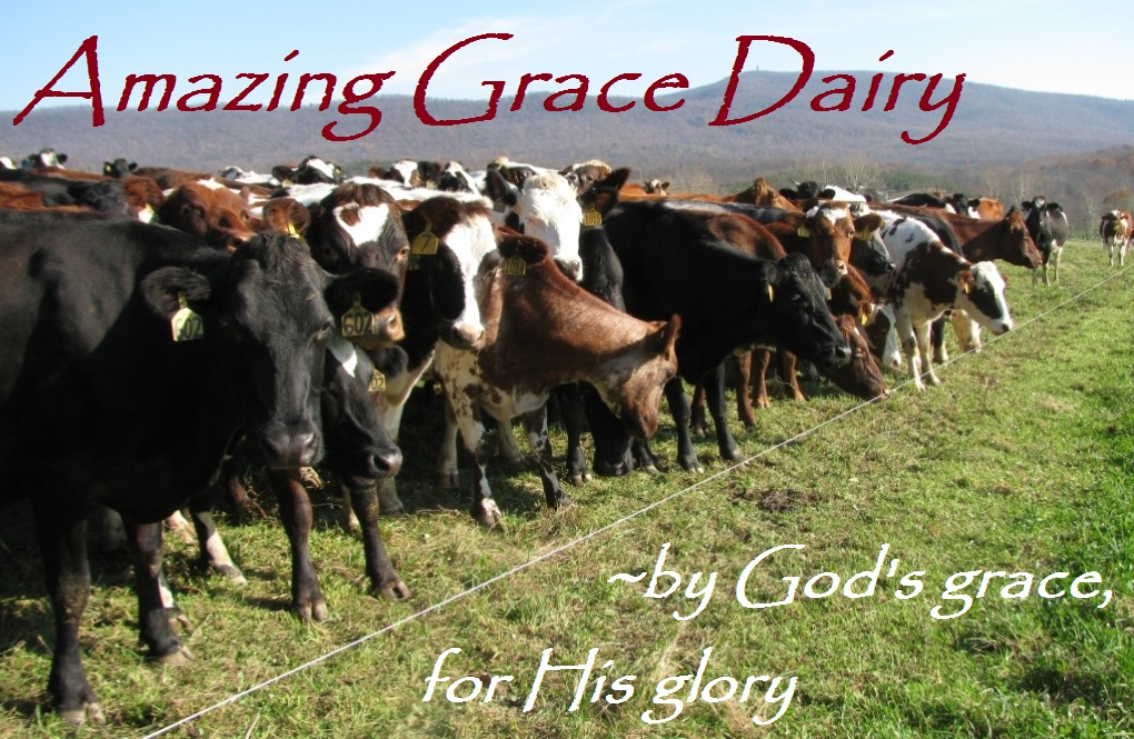 Amazing Grace Dairy