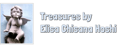 Treasures by Elisa Chisana Hoshi