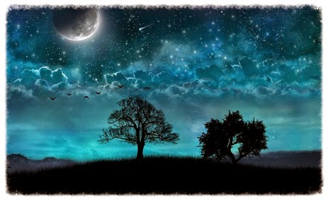 This Live Wallpaper Features A Relaxing Night Scene With Dreamy Blue Color Tone Sparkling And Shooting Stars Tree Silhouette