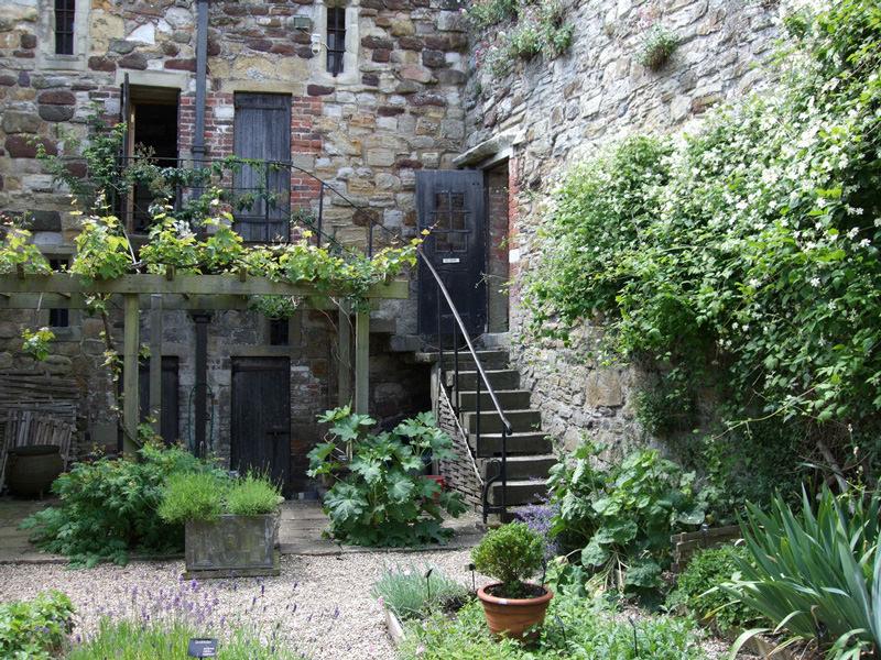 pasos para construir un jardín de ensueño  EcoSiglos
