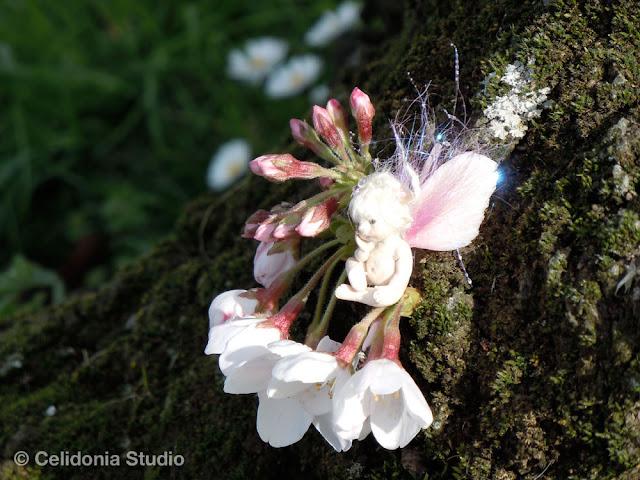 cherry blossom elf
