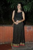 Pavani glamorous photos gallery-thumbnail-7