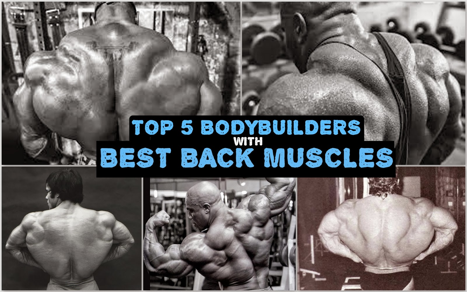 how to find your posts on bodybuilding.com