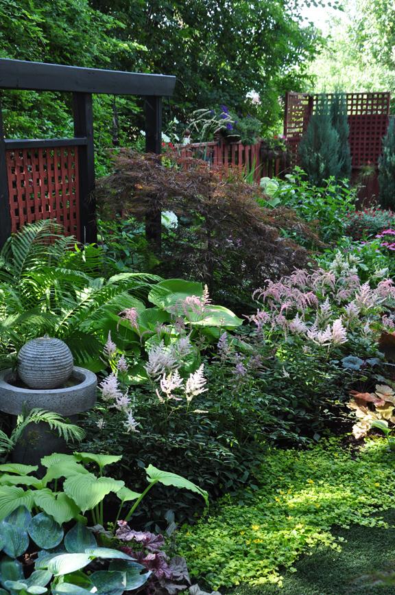 Three dogs in a garden a garden in the shade part 2 for Part shade garden designs