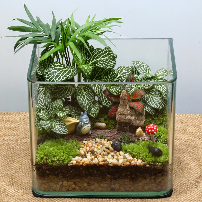 home and garden mini gardens in glass