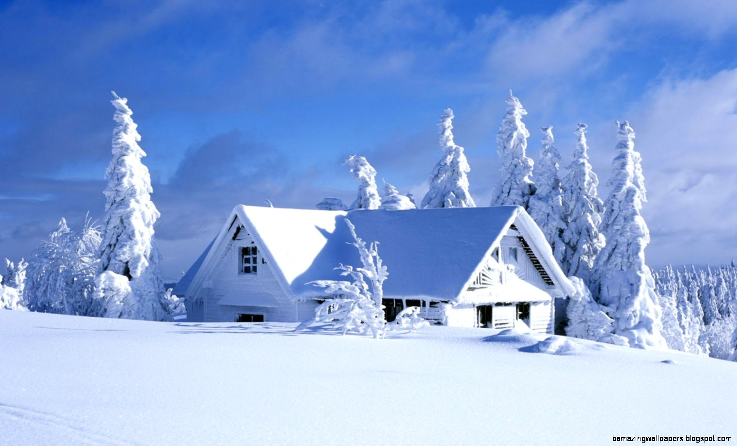 Beautiful Winter Desktop Wallpaper   WallpaperSafari