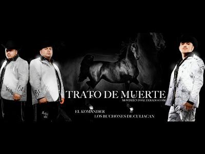Disculpe Usted el potro De Sinaloa Mp3 Downloads