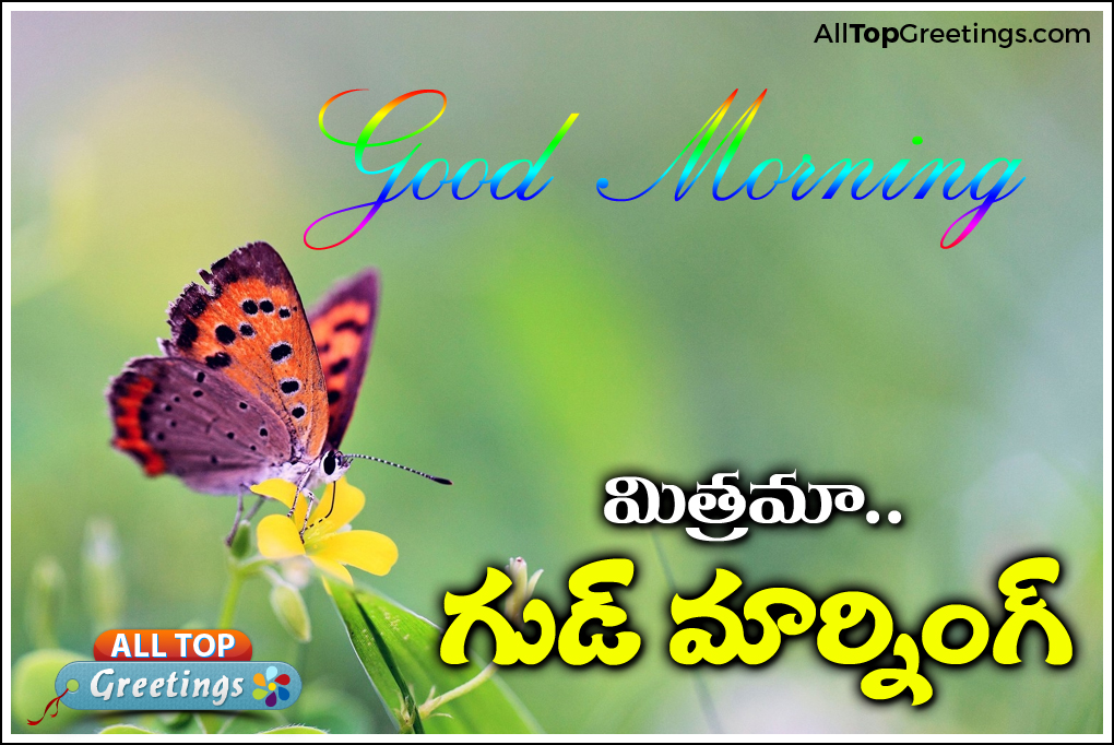 Best telugu good morning greetings with beautiful images and good morning wishes telugu english life quotes wallpapers m4hsunfo