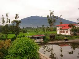cerpen liburan sekolah ke rumah nenek di desa