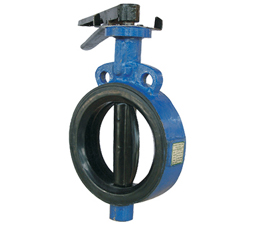 Industrial Valves Ahmedabad, Dual Disc Check Valve,   Dual Disc Check Valve Manufacturer
