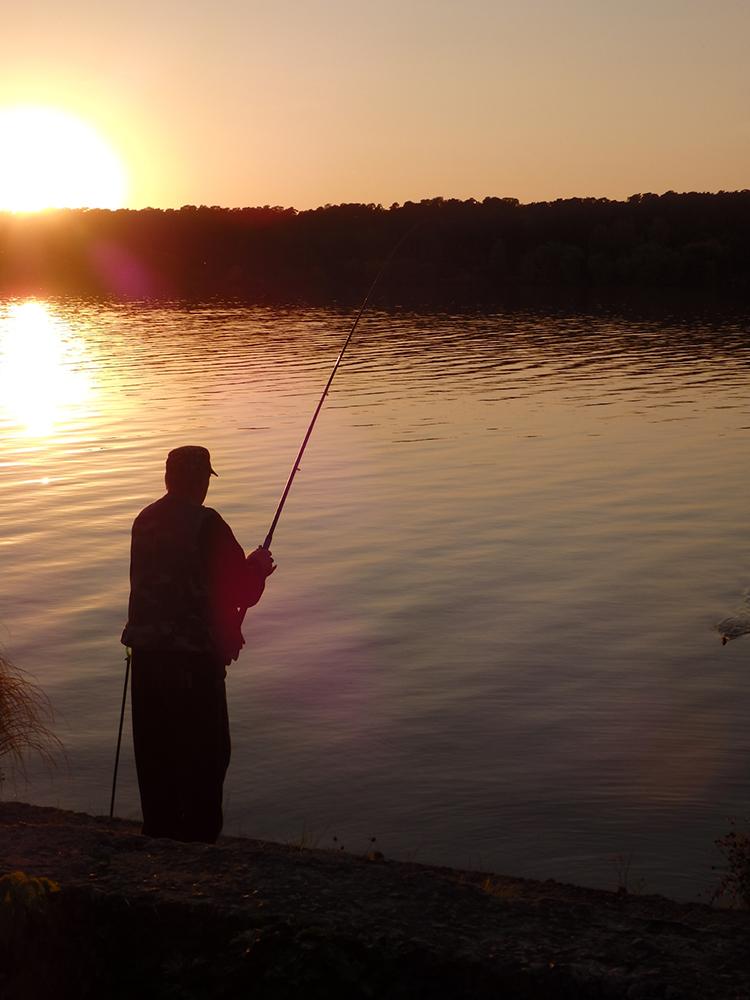 удочка, закат, рыба, вода