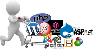 Web Development Meerut, Website developer