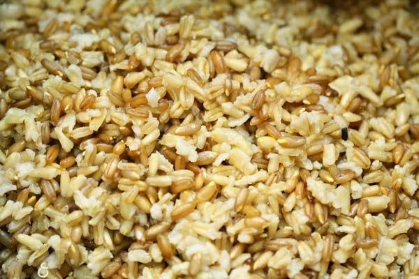 Cooked-Rye-Oat-Groats