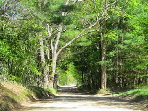 6 Mile Road