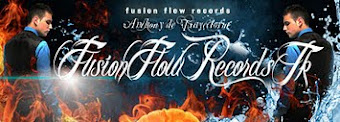 Fusion Flow Records