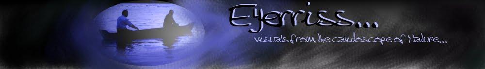Eyerriss