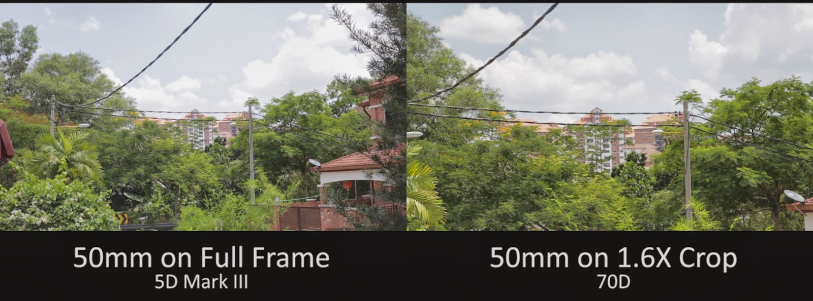 ZY Productions - The Blog: What is the difference between Full Frame ...
