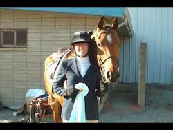 Santa Rosa Arabian Horse Show