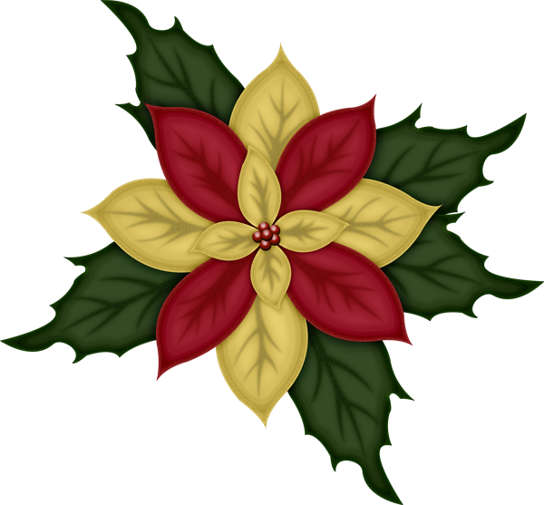 hope you like this poinsettia I made for you, I just love these ...