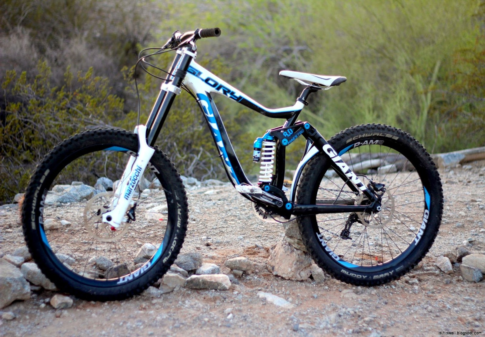 Giant Downhill Mountain Bike