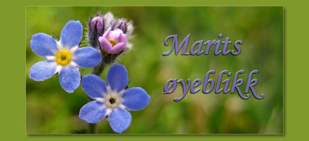 Marits øyeblikk