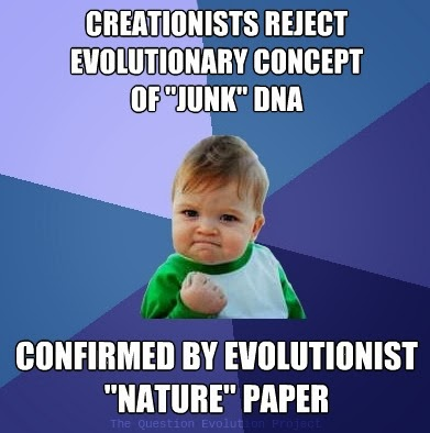 What do evolution deniers/creationists have to say about these facts?