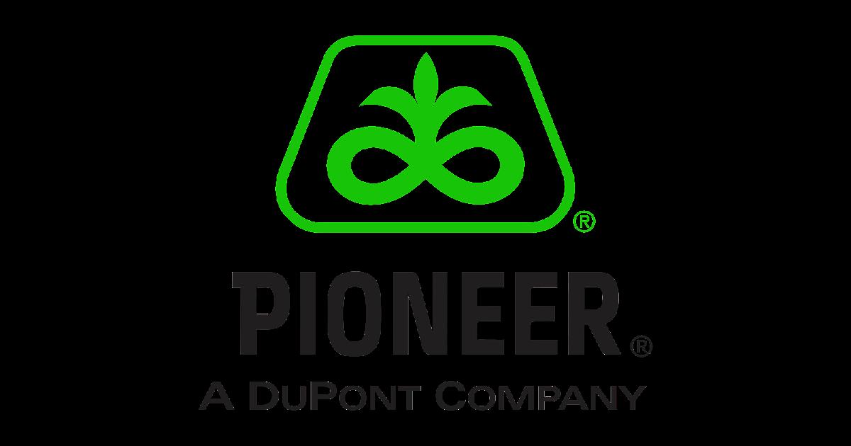 dupont pioneer logo logo cdr vector