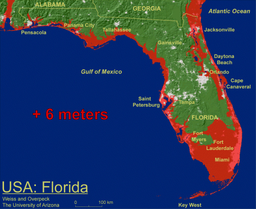 florida map of flood zones