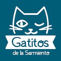 ¡Gatitos en Facebook!