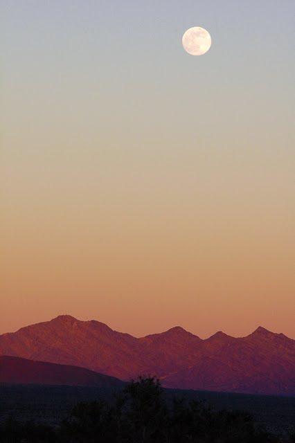 Desert moonrise_7535