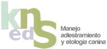 www.knsediciones.com