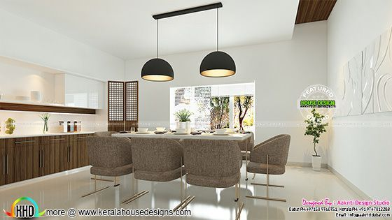 Contemporary style Dining interior