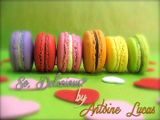 2012.07.24 - SO, DELICIOUS BY ANTOINE LUCAS #24 So,+Macaro
