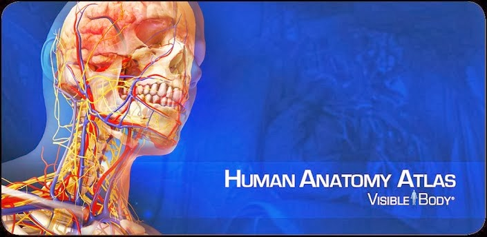 Human-Anatomy-Atlas-apk