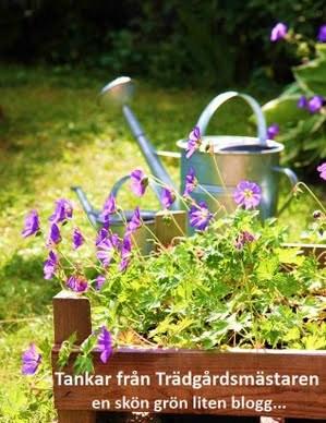 Trädgårdsbloggar indelade i zoner.