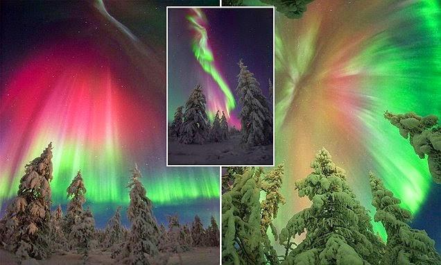 صورة مجمعة للشفق القطبي