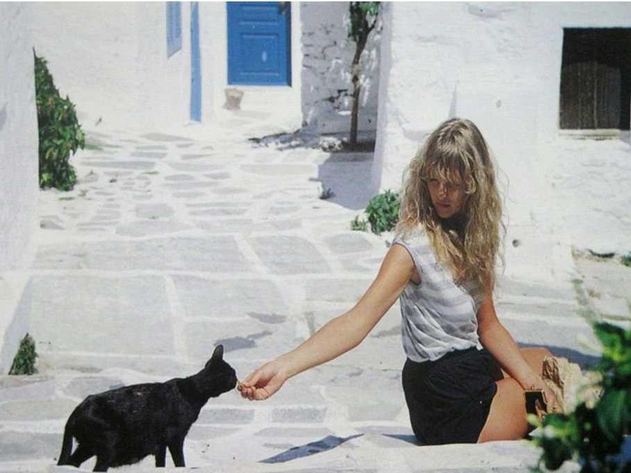 На фото девушка кормит кошку