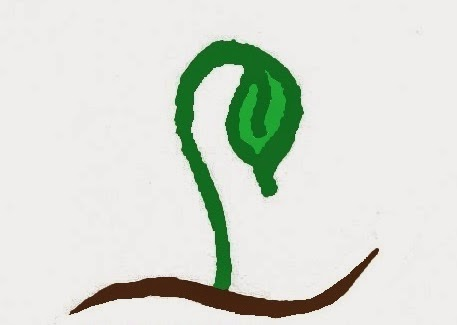 Sproutsandstuff